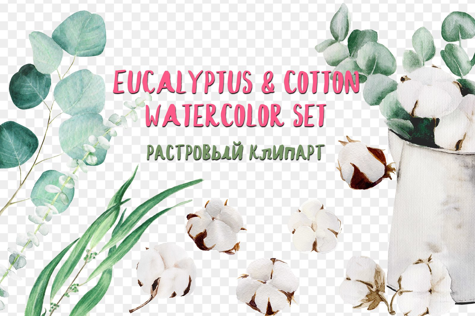 Eucalyptus & cotton watercolor set хлопок png скачать
