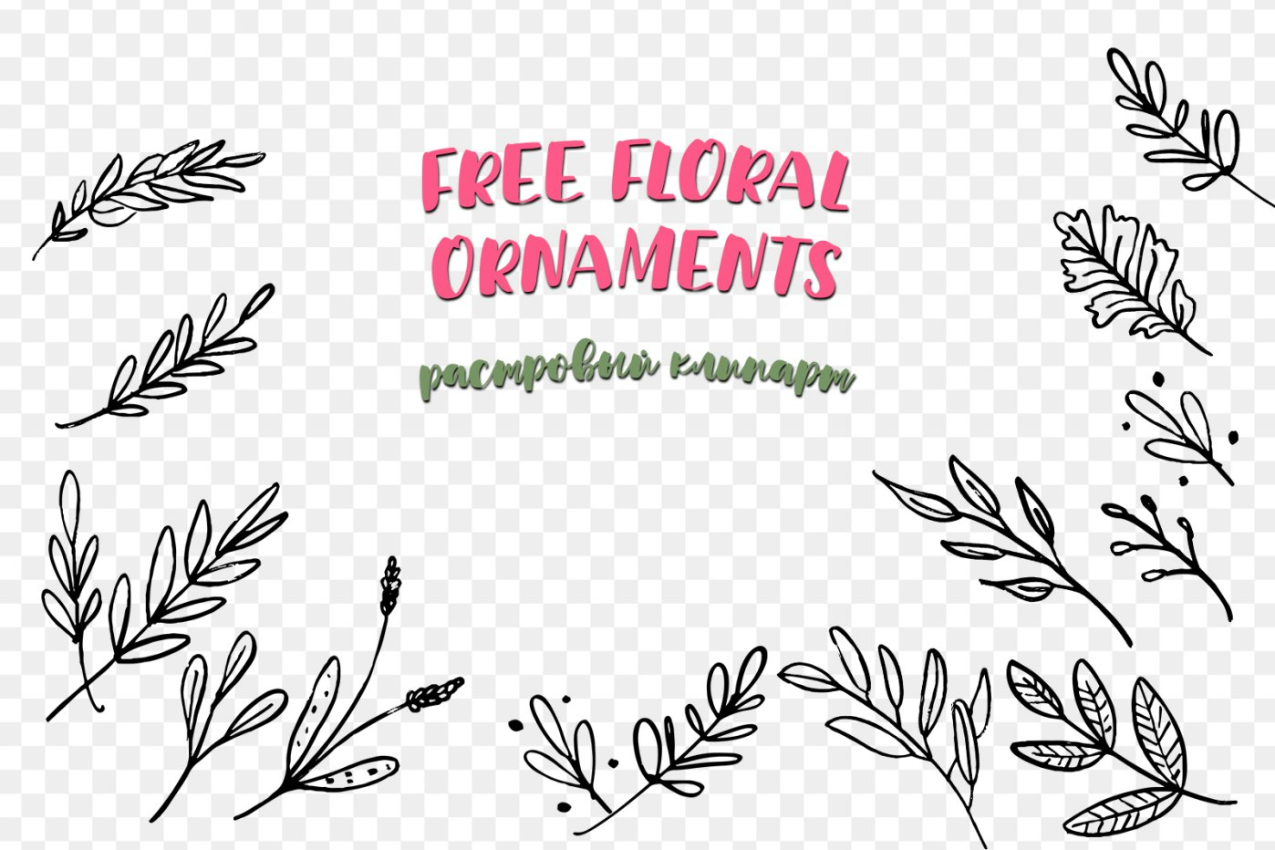 Free Floral Ornaments png