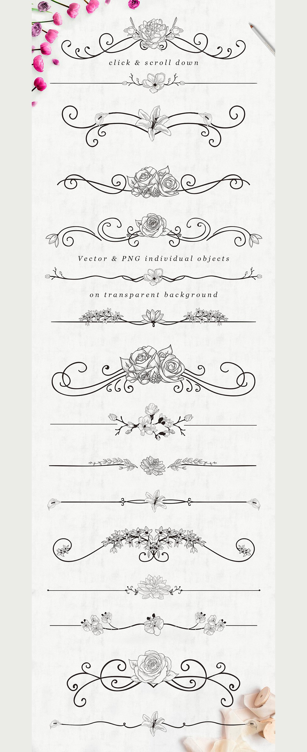 FREE Flourish Text Dividers + Florals illustration
