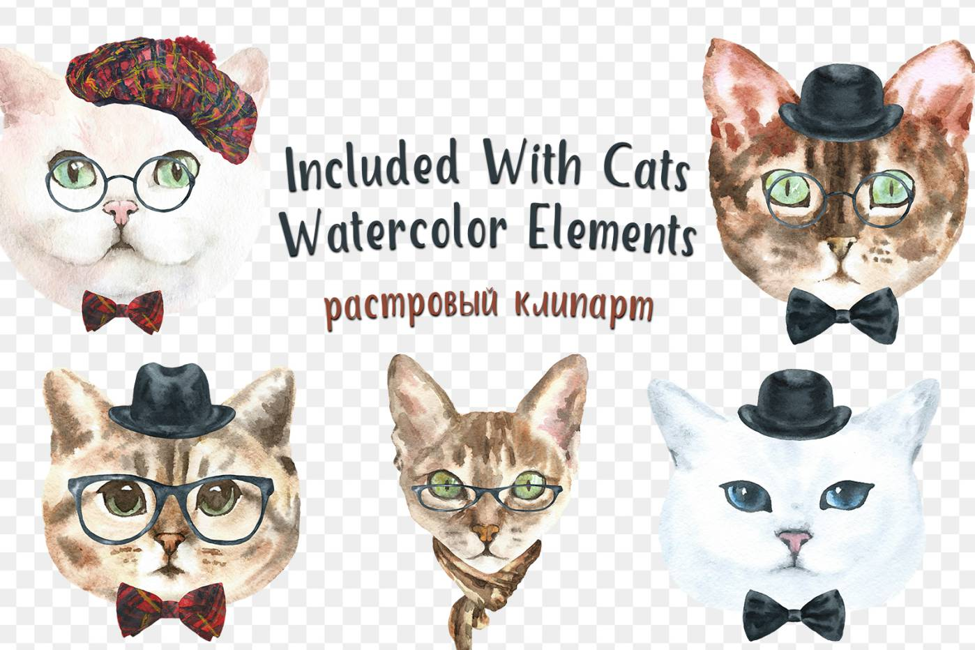Free Cats Watercolor Elements png