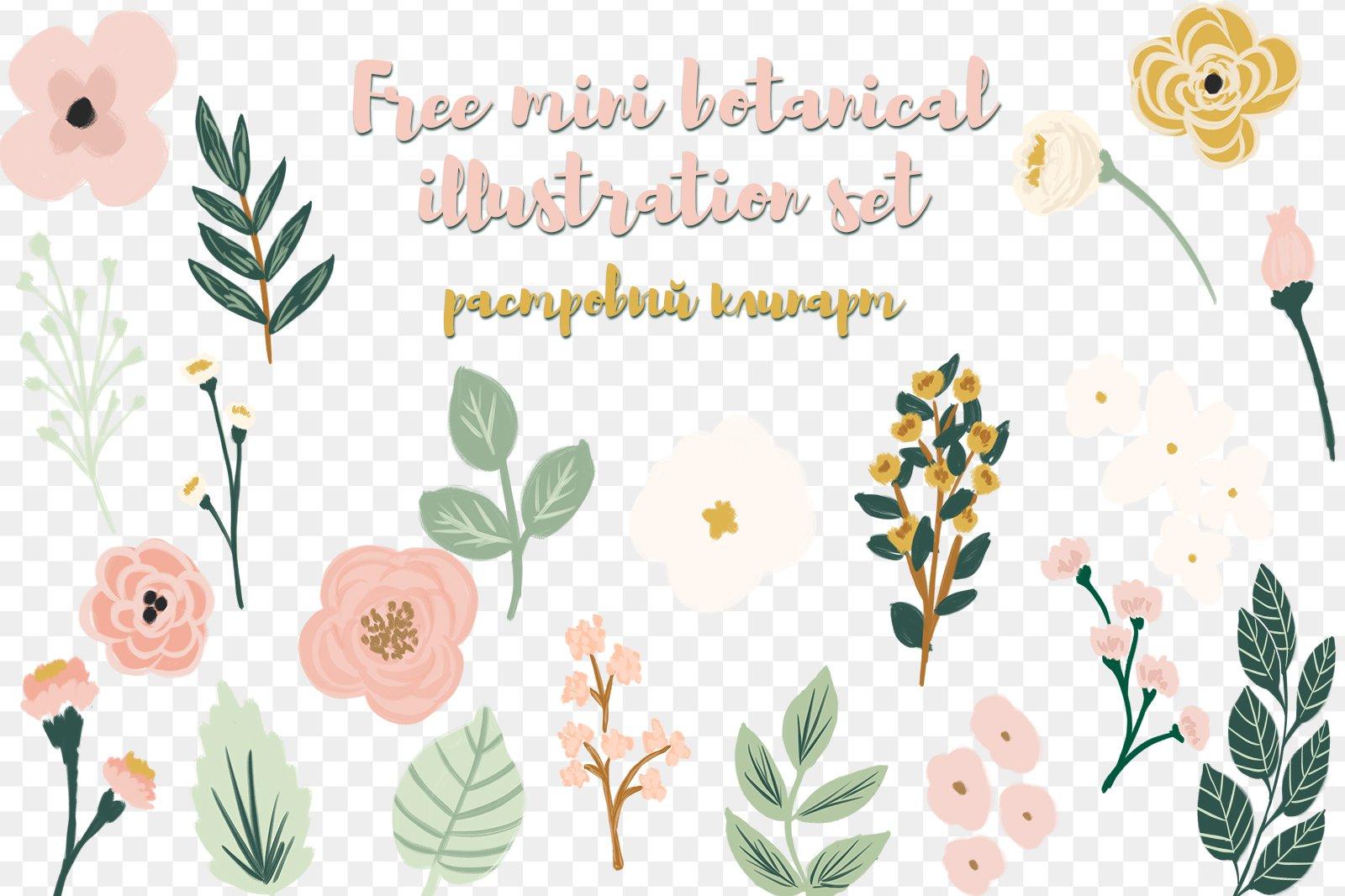Free mini botanical illustration set растровый клипарт скачать