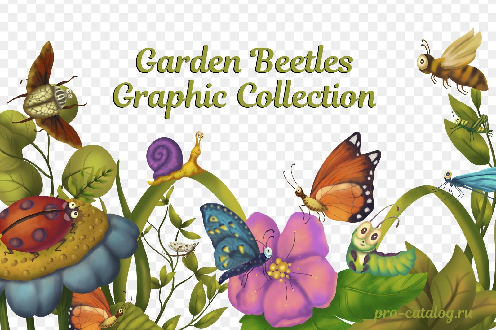 Garden beetles Graphic collection | Растровый клипарт png