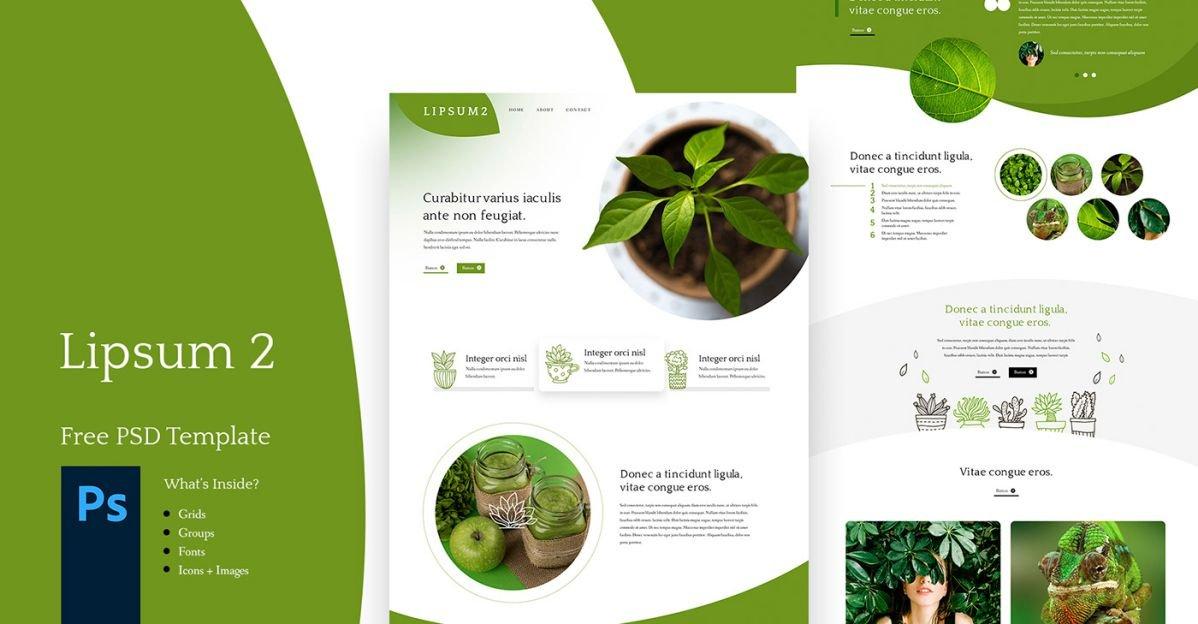Lipsum 2 - Free PSD Web Site Template