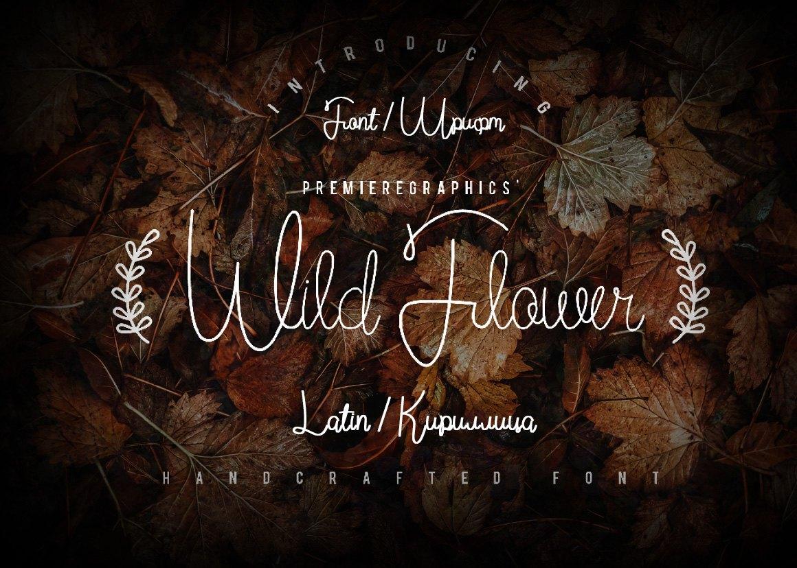 Шрифт Wild Flower Script Cyrillic