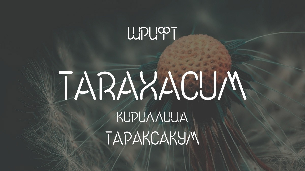 Шрифт Taraxacum Cyrillic