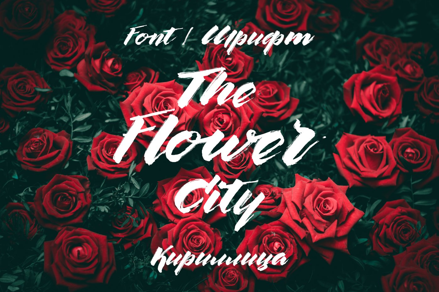 Шрифт The Flower City Cyrillic